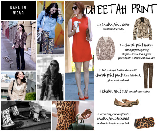 DARE TO WEAR — Our current sale curator, Alicia Lund of Cheetah is the New Black, shows us how to style cheetah print. TIBI Blazer // J.CREW Sweater // ALMOST FAMOUS Pants STEVEN BY STEVE MADDEN Flats // REBECCA MINKOFF Clutch Photos:  1  2  3  4  5  6  7