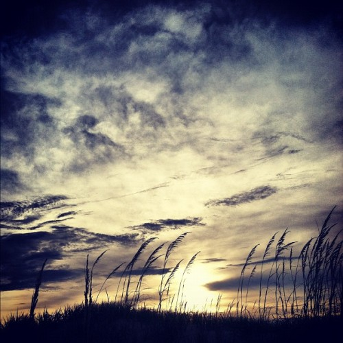 Sunset in the dunes :) #carova #beach #sunset #outerbanks #beach #dunes #seaoats  (Taken with Instagram at Currituck National Wildlife Refuge)