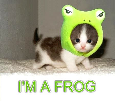 I'm a little froggy.