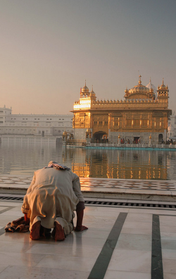 dr0gon:  A devotee paying obeisance at the Darbar Sahib (Harmandir Sahib or Golden Temple) Amritsar, Punjab, India.