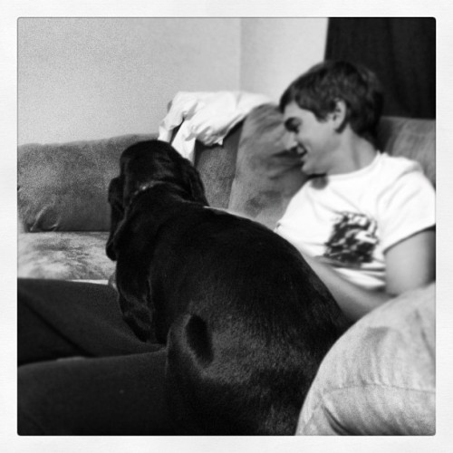 Duke has decided to be a 75 pound lap dog. (Taken with Instagram)