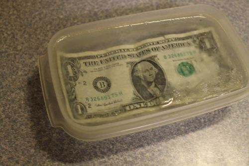 imjustonekid:  clintbartonsbumpinbooty:  my brother froze a dollar in a block of ice he's very proud of himself  thats what i call cold hard cash
