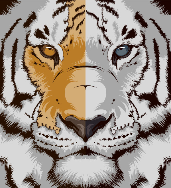 "craniodsgn:  I just posted ""Tiger"" CranioDsgn  (Spain) on sale at Society6"