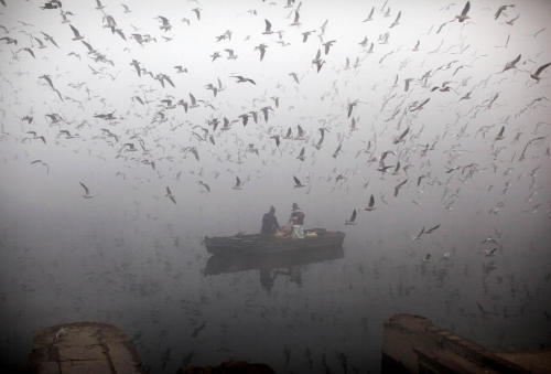 Indians feed birds from a boat on the River of Yamuna as it is enveloped by winter morning fog in New Delhi, India, Friday, Jan. 20, 2012. (AP Photo/Kevin Frayer) (via Daily Life Around the GlobePlog Photo Blog)