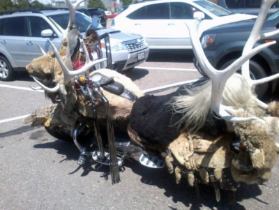 collegehumor:  Taxidermy Motorcycle They say every animal it hits becomes a part of it.