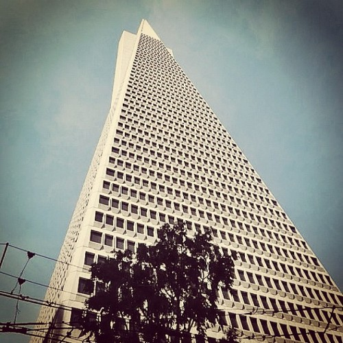 Transamerica Pyramid #building by William L. Pereira (1972) #SanFrancisco #California #archdaily #architecture #architecturalphtography #instagood #iphonesia #buildingmadness  (Taken with Instagram)