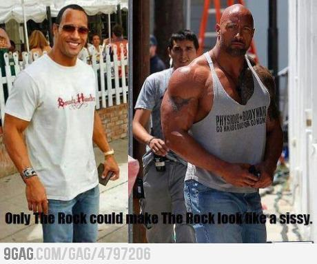 9gag:  Only the rock……