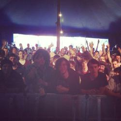 thenthickens:  THANKYOU 2000 TREES   THERE I AM!