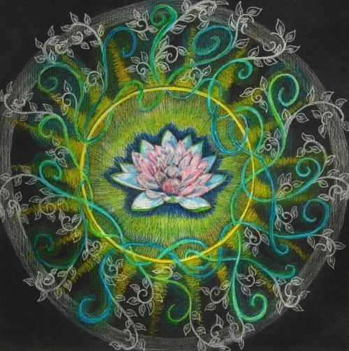 """The Pink Lotus"" by hadas64"