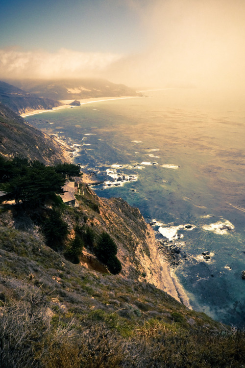 surferdude182:  (by rawmeyn)