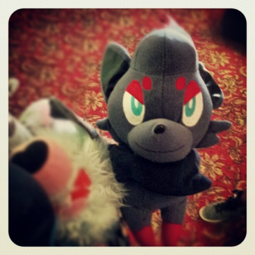 ellarcy:  Got a #zorua too out of the #pokemon #clawmachine (Taken with Instagram)
