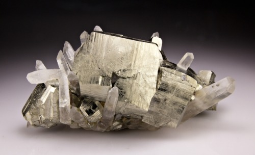 mineralia:  Pyrite with Quartz from Washington by Dan Weinrich