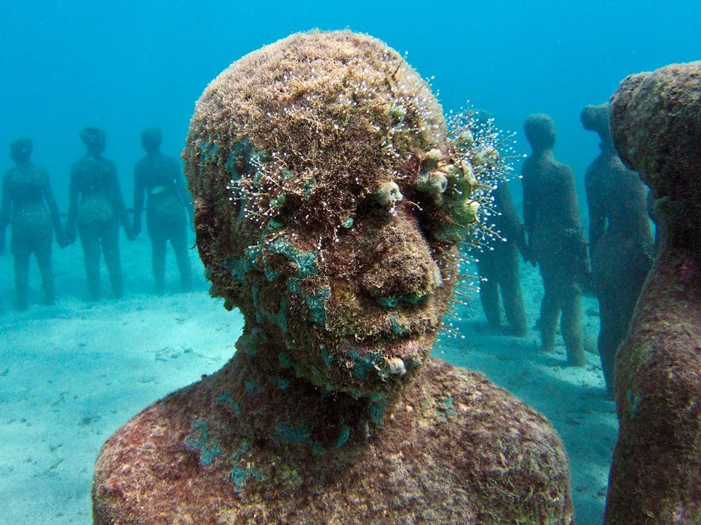 Photograph by Jason deCaires Taylor