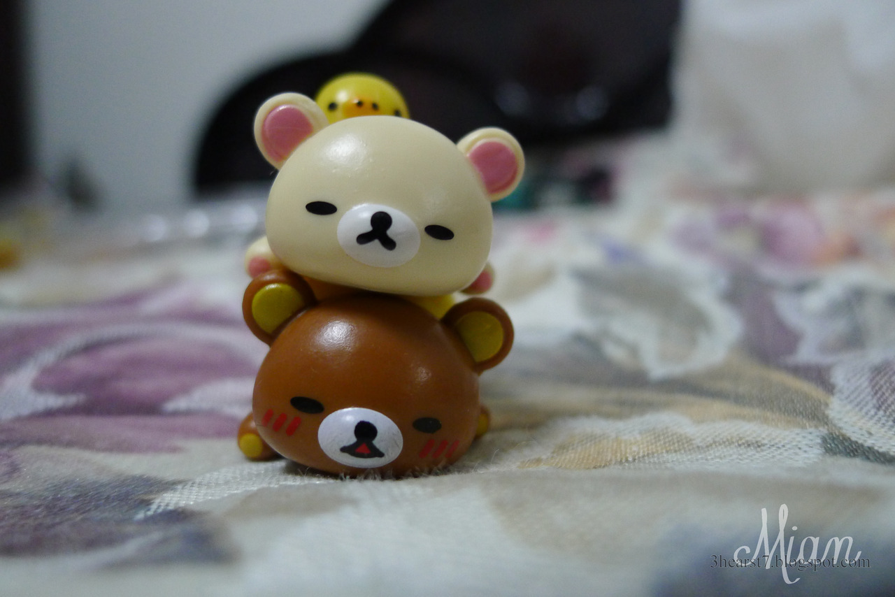x Korilakkuma, galore for
