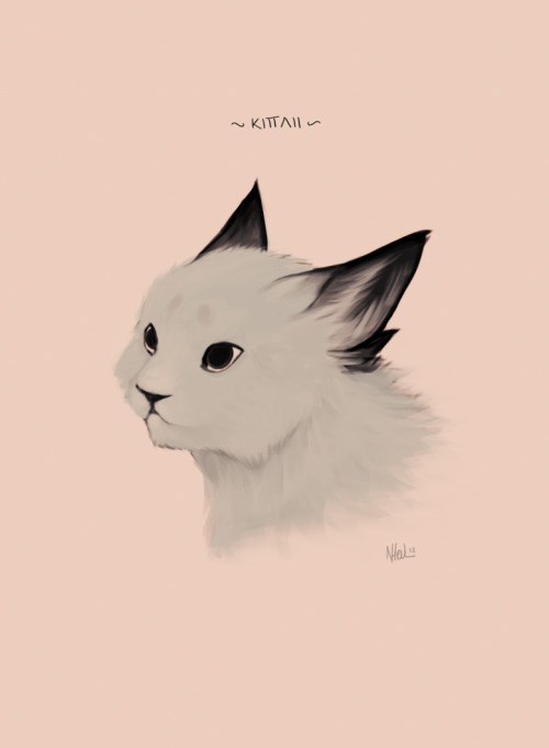 sketch of kittahown art