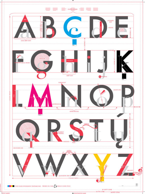 datavis:  Alphabet of Typography by Pop Chart Lab