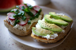 Avocado and cottage cheese sandwich