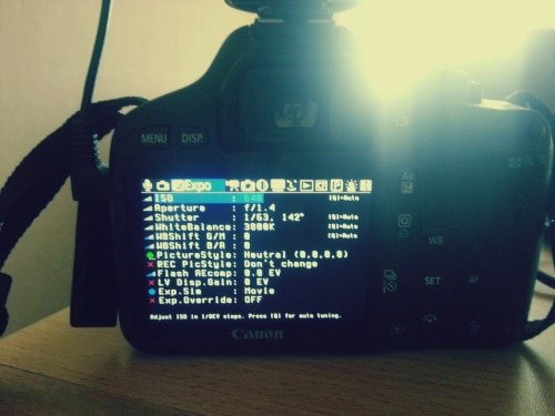 Magic Lantern firmware on DSLR. No more AGC.