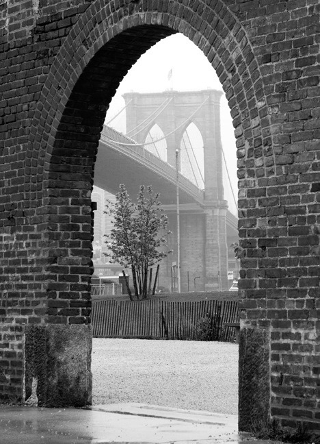 brooklyntheory:  Brooklyn Bridge, DUMBO