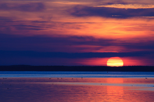 lum4:  Sunset on the Müritz, Mecklenburg-Vorpommern, Germany by Xindaan on Flickr.