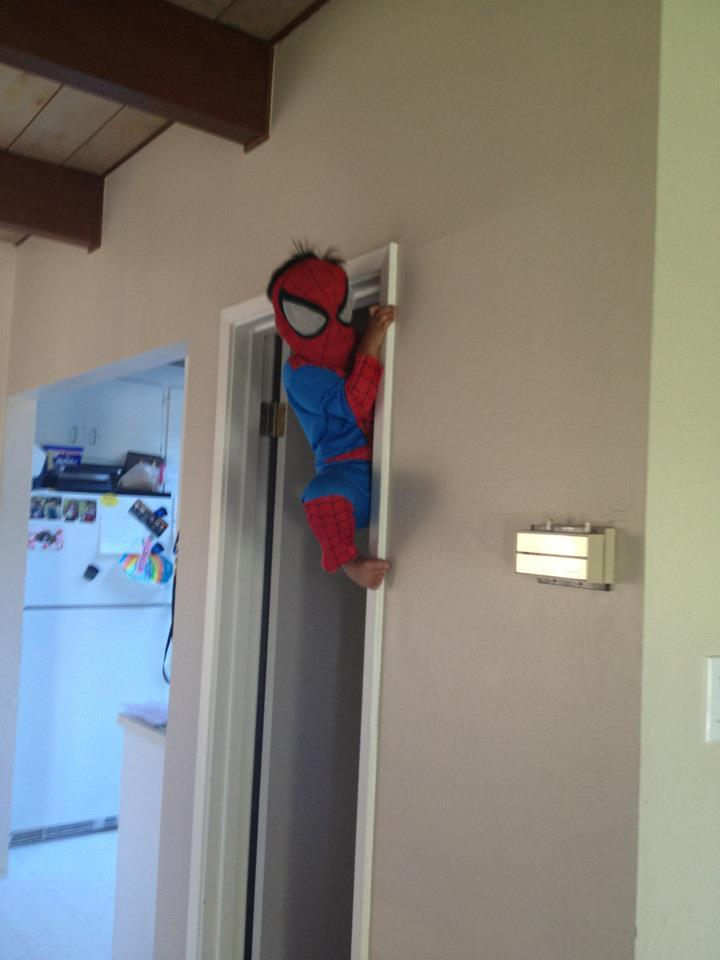 spiderman.rar