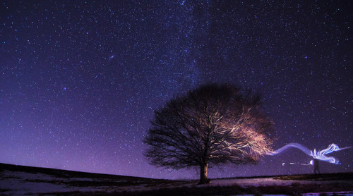 neptunesbounty:  Albero sotto le stelle by Roberto Lupini on Flickr.  This reminds me of the Tree of Enlightenment. The portal that connects our world with the rest, isn't it beautiful?