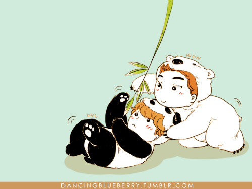 dancingblueberry:  Polar Bear Siwon and Panda Kyuhyun Because I promised Fang I would make her a chibi fanart and Vane introduced me to Shirokuma Cafe.