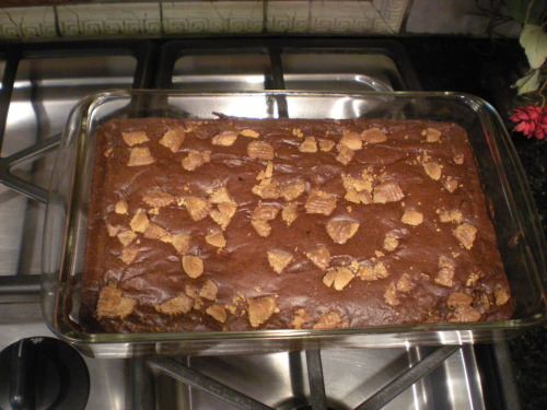 decadentdishny:  Chocolate Peanut Butter Cup Brownies!   these were so yummy!