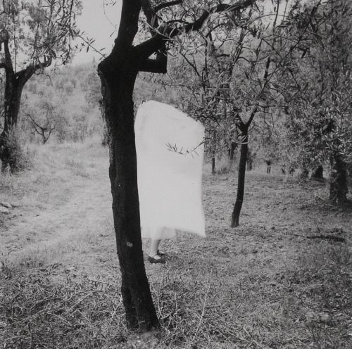 regardintemporel:  Francesca Woodman