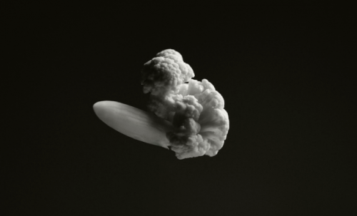 "Famous explosions with vegetables… chazmcintyre:  Brock Davis is a multidisciplinary creative from Minneapolis. One of his latest photography projects called ""Famous explosions"".  The cool thing is that everything is recreated with cauliflower.  COOL!"