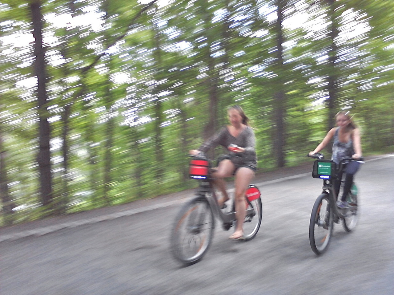 TANDEM LoVe n  jOy …sur le Mt-Royal
