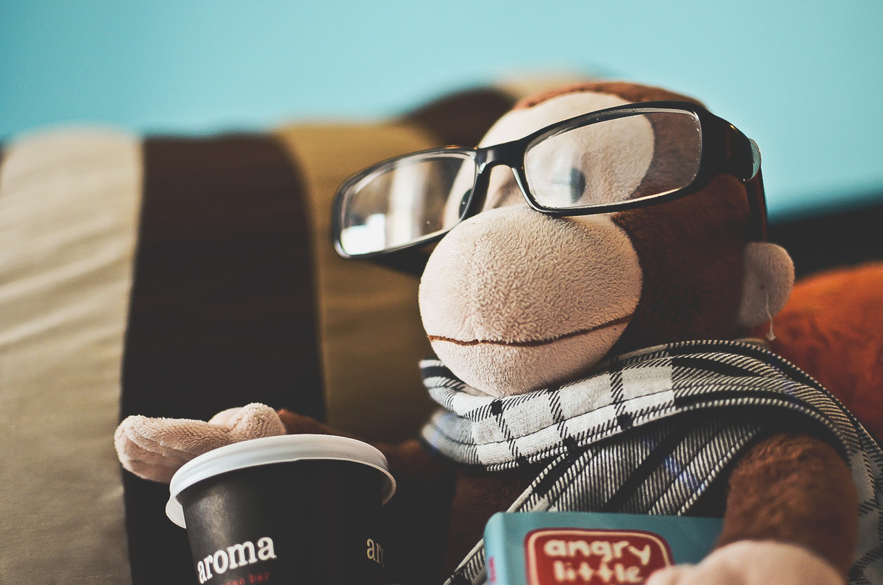This hipster monkey is up to no good.