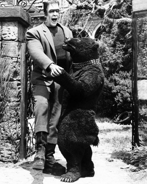 Herman Munster with Olga the Dancing Bear in Herman's Child Psychology, 1965