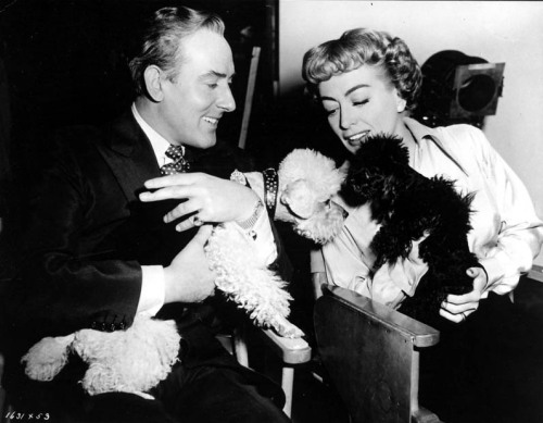 Michael Wilding and Joan Crawford hold each other's poodles, as Cliquot and Titi get acquainted on the set of Torch Song