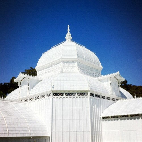 hey there (Taken with Instagram at Conservatory of Flowers)