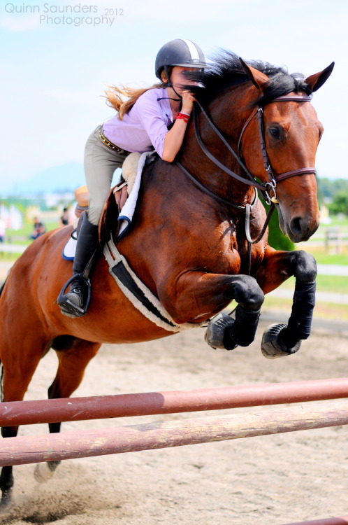 teachmehowtoequitate:  Megan and Cafe Ole this horse is for sale as well :) Solid 1.15m jumper