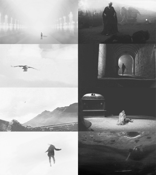fujiidom:  harry potter → black&white