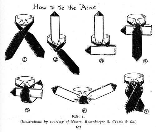 workingclassdandy:  How to tie a formal ascot.