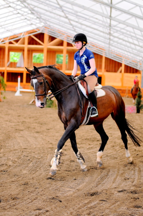 teachmehowtoequitate:  my friend Rylie riding a mare named Sunday at my new barn! Btw the indoor isn't finished yet! The part behind the horse will be a viewing area in the bottom and the top part will be a loft complete with a kitchen and bedroom! It's gonna be so nice omg ♥