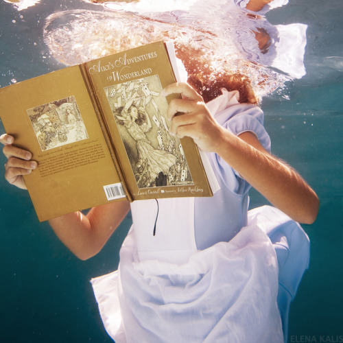 bookmania:  Alice in Waterland Underwater Photography by Elena Kalis