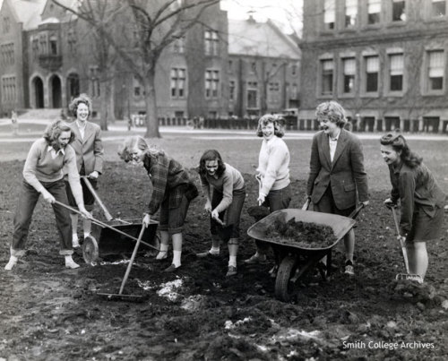 coolchicksfromhistory:  Smith College students making a Victory Garden between Library and Burton Hall, 1943. Photograph by Fred G. Chase.