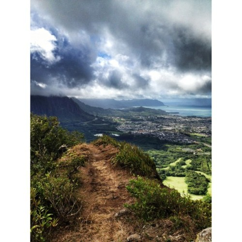 This would be the view from on top of the cliff…. #hawaii #crazy #adventure with @anchoredin  (Taken with Instagram at Pali Lookout)