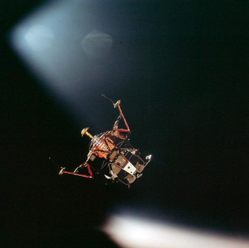 commandmodulepilot:  Apollo 11 - Neil and Buzz fly the Eagle down to land at the Sea of Tranqulitity - This Day in 1969  It's that magical time of year again.