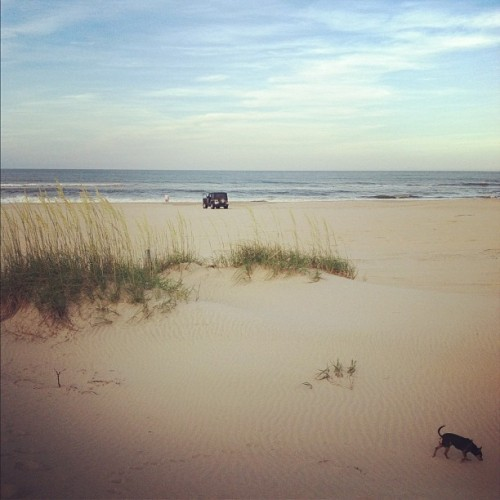 Beach life. #curriruck #beach #carova #obx #ocean #sand #jeep  (Taken with Instagram at Currituck National Wildlife Refuge)