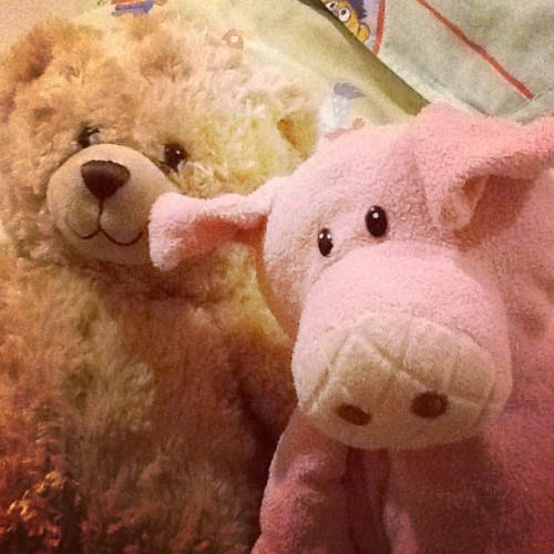 Meet Iggy the piggy and Flaffi Jr! (Taken with Instagram)