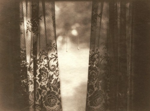 weissewiese:  Dan Estabrook, from the series Interior Views
