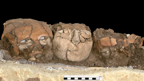 New Open Access Article-   The Plastered Skulls and Other PPNB Finds from Yiftahel, Lower Galilee (Israel) http://www.persee.fr/web/revues/home/prescript/issue/paleo_0153-9345_2008_num_34_2