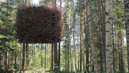 8 unreal treehouse escapesGet in touch with your inner bird at these fantastic arboreal hotels and lodges.