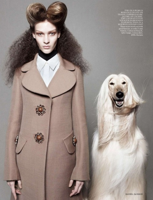 (via cool chic style fashion: VOGUE UK: BEST IN SHOW BY PHOTOGRAPHER DANIEL JACKSON)