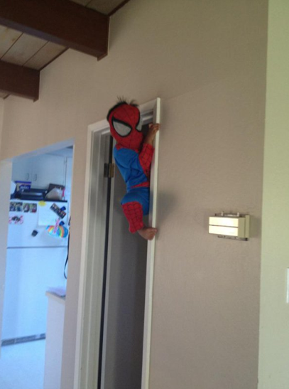 Young Spider-Man With great power comes great ability to reach the cookie jar.